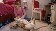 2.	Carina sits on the floor rubbing her guide dogs tummy.